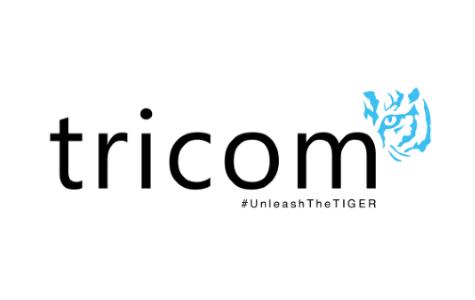 'Unleash the TIGER' – TIGER Search